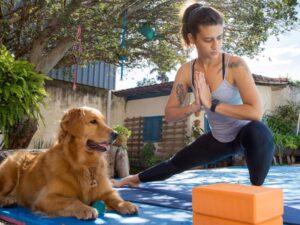Novas diretrizes OMS atividades físicas